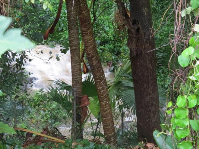 turbulent river